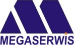 megaserwis-logo